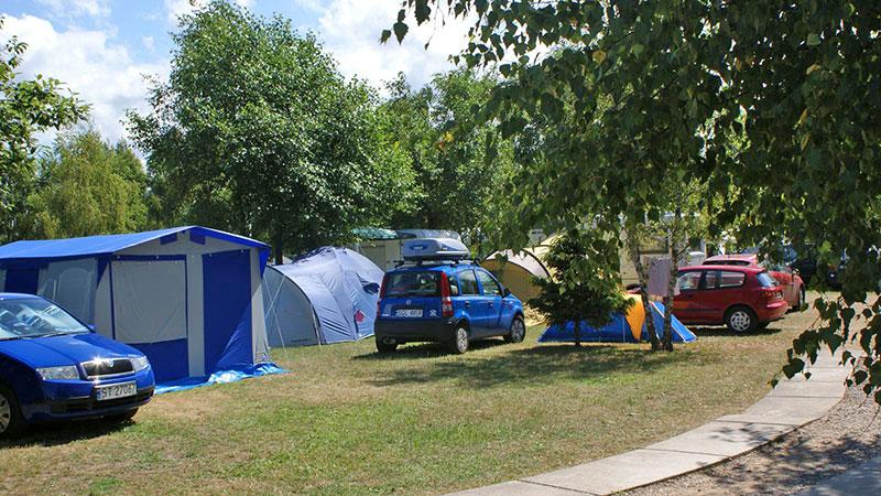 Łeba - Camping 51 Leśny, Brzozowa 16 A