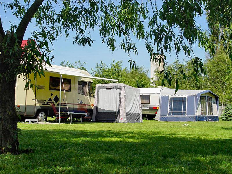 Camping LEŚNY nr 51
